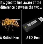 Belle abeille