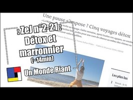 Zététique et journalisme - #2-21 - Détox et marronnier