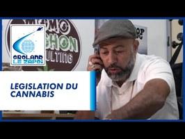 Légalisation du cannabis - Groland - CANAL+