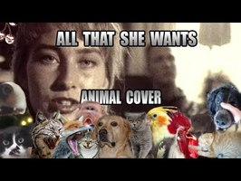 Ace Of Base - All That She Wants (Animal Cover)