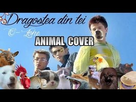 O-Zone - Dragosta Din Tei (Animal Cover)