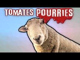 🍅 Dans le doute, LYNCHONS :P - Cancel Culture : Evolution ou Régression ? Tomates Pourries !