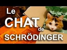 LE CHAT DE SCHRÖDINGER - PAROLE DE CHAT