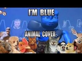 Eiffel - I'm Blue (Animal Cover)