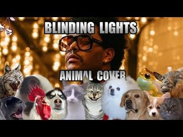 The Weeknd - Blinding Lights (Animal Cover)