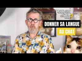 😺 Pourquoi on dit... donner sa langue au chat ?