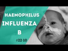 PNN 22.10 - L'Haemophilus Influenza B
