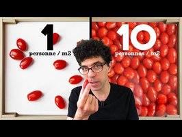 10 niveaux de foule expliqués avec des tomates
