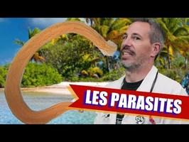 SALES BÊTES #4 : LES PARASITES