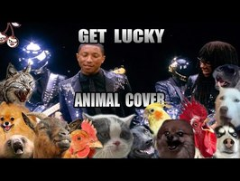 Daft Punk ft. Pharrell Williams, Nile Rodgers - Get Lucky (Animal Cover)
