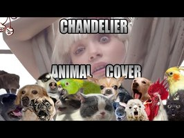 Sia - Chandelier (Animal Cover)