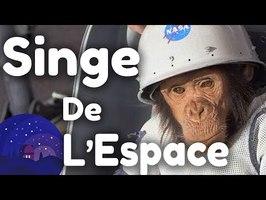 Ham Le Chimpanzé de l'Espace