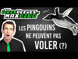IDÉE REÇUE #53 : Les pingouins ne peuvent pas voler