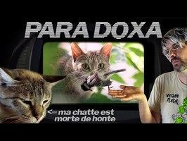PARA DOXA - INTERDIRE au CHAT de CHASSER