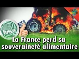 [RELOCALISATION] - La FNSEA va-t-elle détruire l'agriculture Française ?