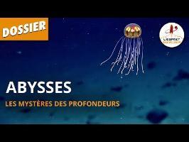 ABYSSES : LES MYSTÈRES DES PROFONDEURS - Dossier #17 - L'Esprit Sorcier