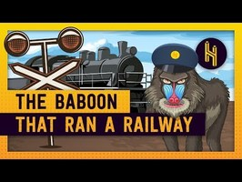 The Baboon That Controlled a Railway for 9 Years