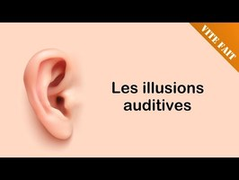 🧆 VITE FAIT : Les illusions auditives