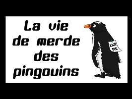 Les Cassos de la Nature - épisode1 Les pingouins