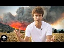 Faut-il laisser brûler ces forêts ? - DBY #83