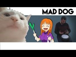 Le VIBING CAT et la renaissance de ievan Polkka - La Minette Mème