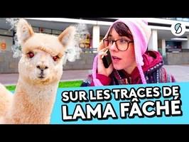 Lama fâché, le fake à plein Youtube - WTFAKE #18