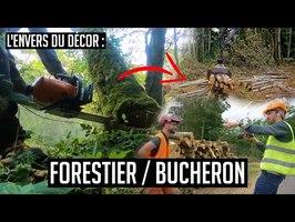 Une journée avec #25 : un bûcheron/forestier