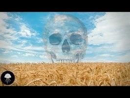 La pire erreur de l'humanité - DBY #55