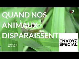 Envoyé spécial. Quand nos animaux disparaissent… - 3 mai 2018 (France2)