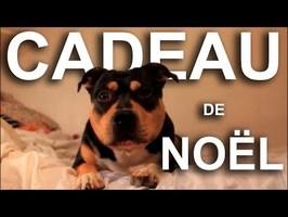 LE CADEAU DE NOËL (vidéo BONUS de remerciement pour les 400% sur Ulule)