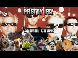 The Offspring - Pretty Fly (Animal Cover)