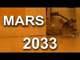 MARS 2033