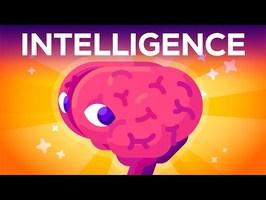Qu'est-ce que l'Intelligence ? Où Commence-T-Elle ?