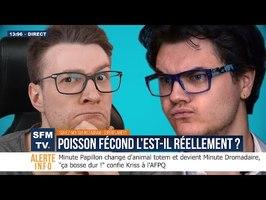 POISSON FÉCOND L'EST-IL RÉELLEMENT ? - #SFMTV