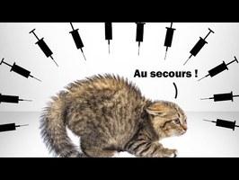 Combien de chatons seront tués par les vaccins en 2021 ?