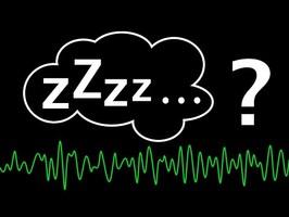Pourquoi dort-on ? Le mystère scientifique du sommeil