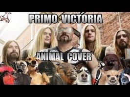 Sabaton - Primo Victoria (Animal Cover)