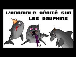 Les Cassos de la Nature - épisode2 Les dauphins