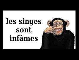 Les Cassos de la Nature - épisode3 Les singes