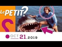 ❓LE PRINCIPE DE PRÉCAUTION • Le Petit Point d'? - 21 oct 19