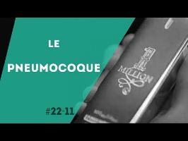 PNN 22.11 - Le Pneumocoque