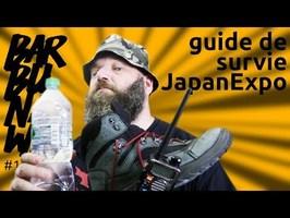 guide de survie (pour les daron) à la JapanExpo - barbuNawak