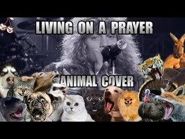 Bon Jovi - Living On A Prayer (Animal Cover)