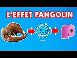 L'EFFET PANGOLIN