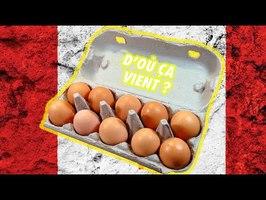 D'où vient la boite à œufs ?