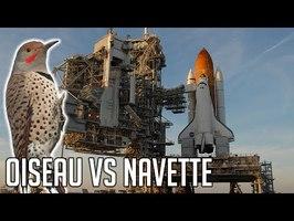 🚀 STS-70 - Quand un oiseau a défié la NASA