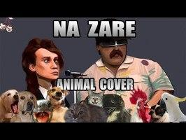Alliance - Na Zare (Animal Cover)