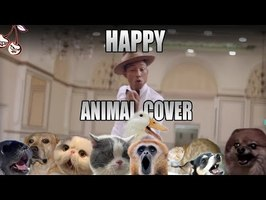 Pharrell Williams - Happy (Animal Cover)