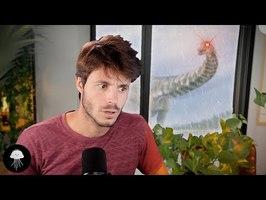 La méthode pour ressusciter des espèces disparues - DBY#84