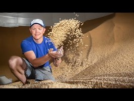 Everything About Grain Bins (Farmers are Geniuses) - Smarter Every Day 218